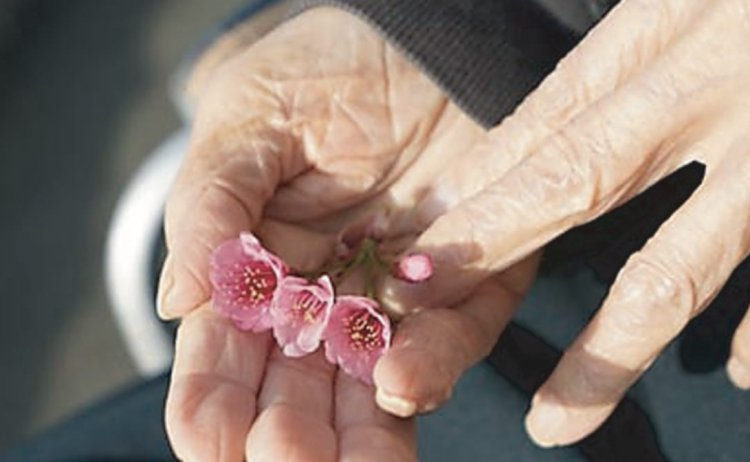 闘病しながら元気を届ける 「平成の花咲か爺さん」