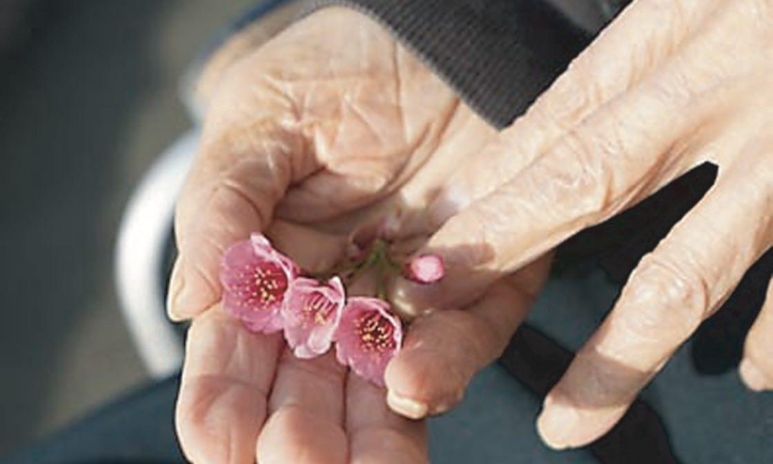 闘病しながら元気を届ける <br>「平成の花咲か爺さん」