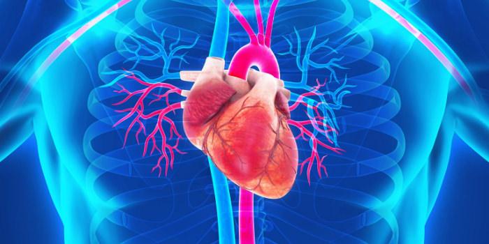 大動脈疾患